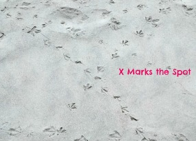 x in sand 2