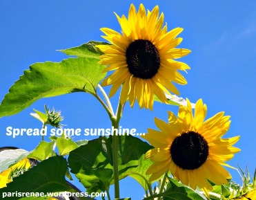 spread sunshine