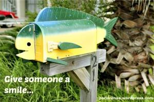 fish box2