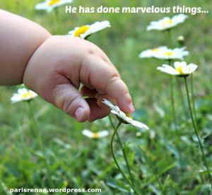 baby hand daisy pixa x
