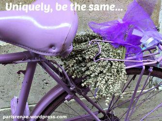 bicycle purple pixa x