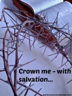crown of thorns pixa x