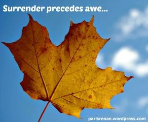 autumn leaf yellow pixa x