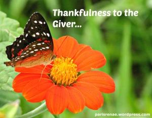 butterfly org flwr pixa x
