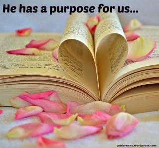 petals book