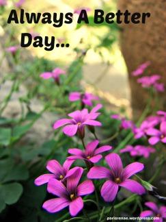 deepflower